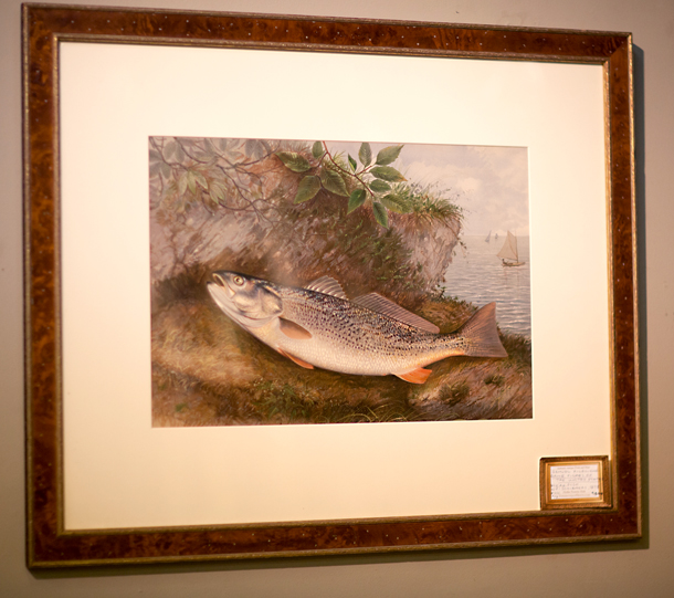 Weakfish Print